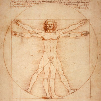 "Sketch from Da Vinci"" Homo Vitruvianus"""